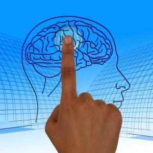 Curso Online: Como Planificar Tus Taller de Memoria (2plazos) DESCUENTO ESPECIAL
